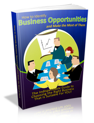 Product picture How to Identify Business Opportunities- MRR